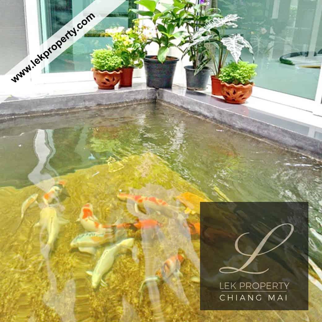 Lekproperty.com Chiang Mai House Land Condo Villa Pool Buy Sell Rent H110018